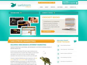 Saelstrom Marketing thumnail