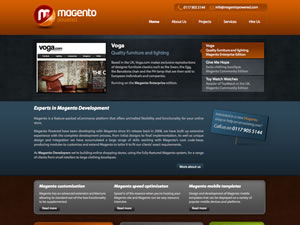 Magento Developer thumnail