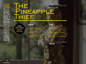 The Pineapple Thief thumnail